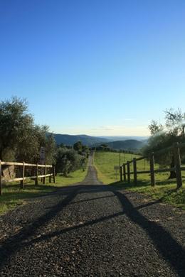 Toscane - Ein weg